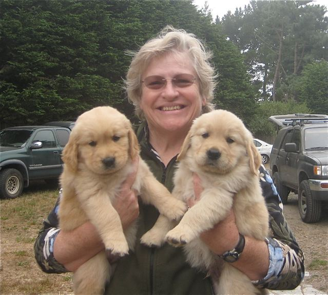 Suzanne with two of the Finn x Bella pups